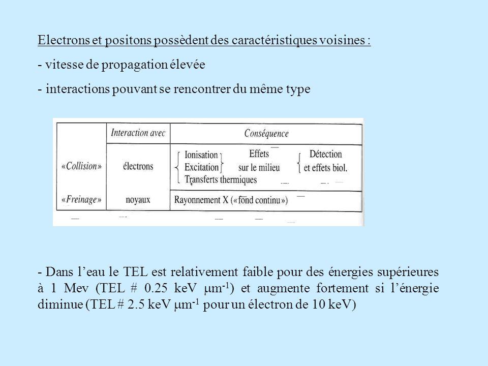 Electrons et positons possèdent des caractéristiques voisines : - vitesse de propagation élevée - interactions pouvant se rencontrer du même type - Dans leau le TEL est relativement faible pour des énergies supérieures à 1 Mev (TEL # 0.25 keV m -1 ) et augmente fortement si lénergie diminue (TEL # 2.5 keV m -1 pour un électron de 10 keV