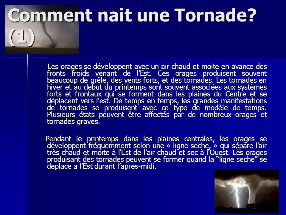 Comment nait une Tornade? (1) Les orages se développent avec un air chaud et moite en avance des fronts froids venant de lEst. Ces orages produisent s
