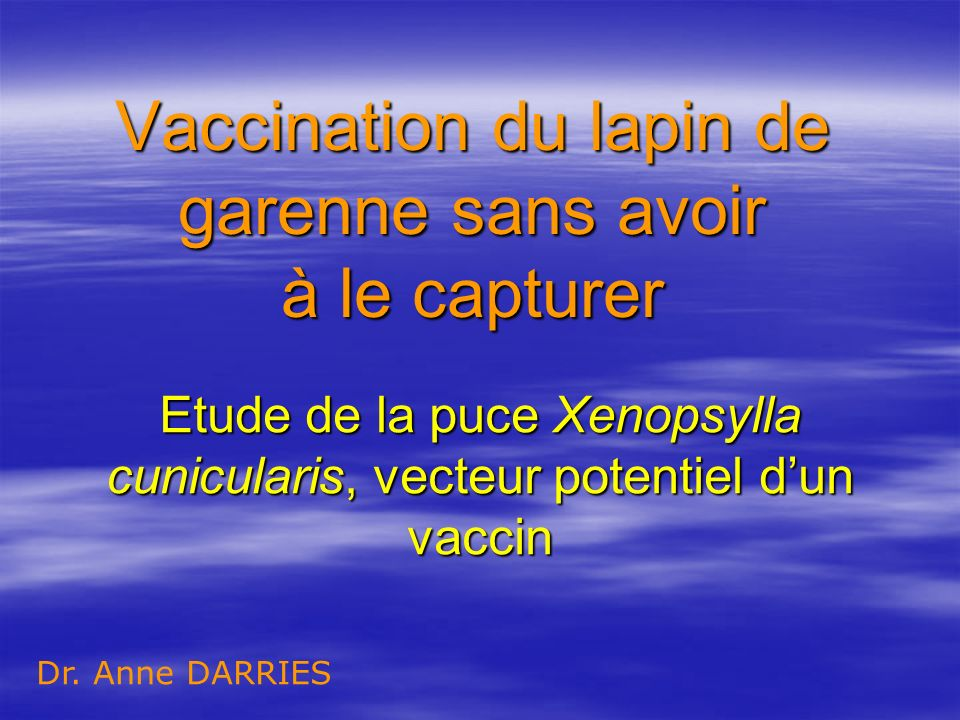 Vaccination du lapin de garenne sans avoir à le capturer Etude de la puce Xenopsylla cunicularis, vecteur potentiel dun vaccin Dr. Anne DARRIES