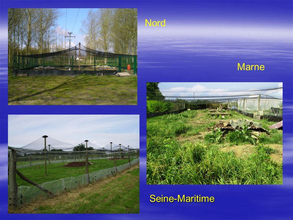 Seine-Maritime Nord Marne