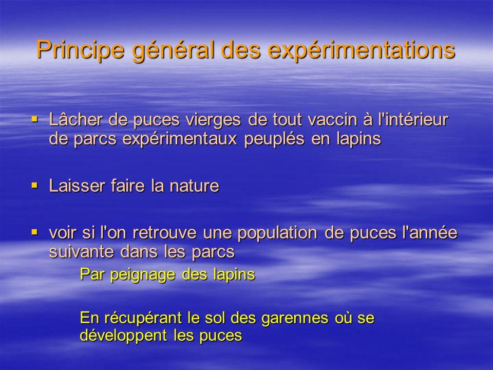 Principe général des expérimentations Lâcher de puces vierges de tout vaccin à l'intérieur de parcs expérimentaux peuplés en lapins Lâcher de puces vi