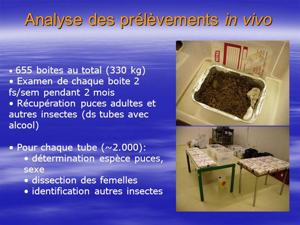 Analyse des prélèvements in vivo 655 boites au total (330 kg) Examen de chaque boite 2 fs/sem pendant 2 mois Récupération puces adultes et autres inse