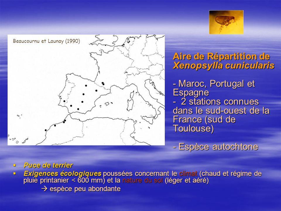 Aire de Répartition de Xenopsylla cunicularis - Maroc, Portugal et Espagne - 2 stations connues dans le sud-ouest de la France (sud de Toulouse) - Espèce autochtone Puce de terrier Puce de terrier Exigences écologiques poussées concernant le climat (chaud et régime de pluie printanier < 600 mm) et la nature du sol (léger et aéré) Exigences écologiques poussées concernant le climat (chaud et régime de pluie printanier < 600 mm) et la nature du sol (léger et aéré) espèce peu abondante espèce peu abondante Beaucournu et Launay (1990)