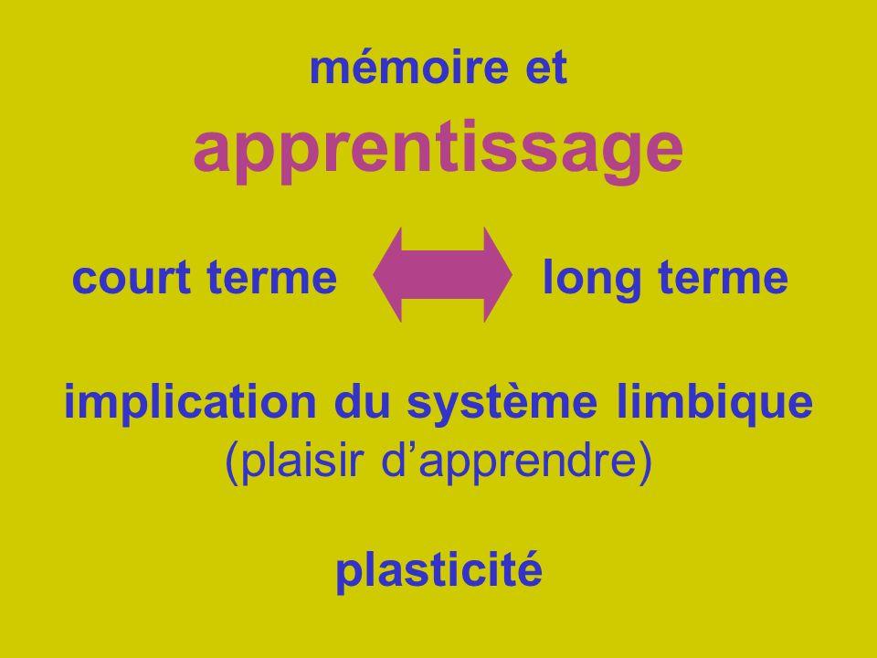 mémoire et apprentissage court termelong terme implication du système limbique (plaisir dapprendre) plasticité