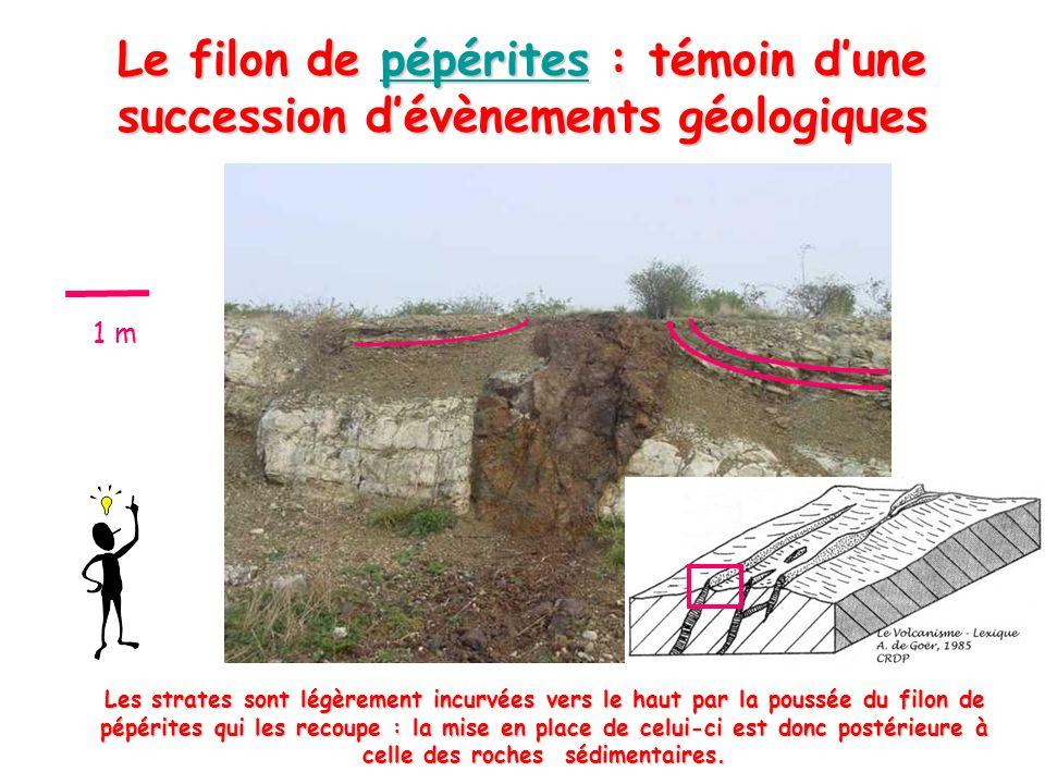 Le filon de pépérites : témoin dune succession dévènements géologiques pépérites Les strates sont légèrement incurvées vers le haut par la poussée du filon de pépérites qui les recoupe : la mise en place de celui-ci est donc postérieure à celle des roches sédimentaires.