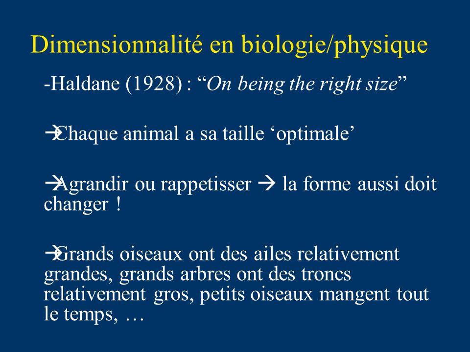 Dimensionnalité en biologie/physique -Haldane (1928) : On being the right size Chaque animal a sa taille optimale Agrandir ou rappetisser la forme aussi doit changer .