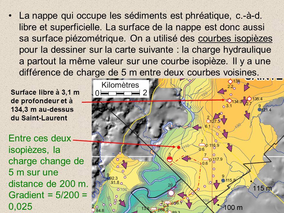 La nappe qui occupe les sédiments est phréatique, c.-à-d. libre et superficielle. La surface de la nappe est donc aussi sa surface piézométrique. On a