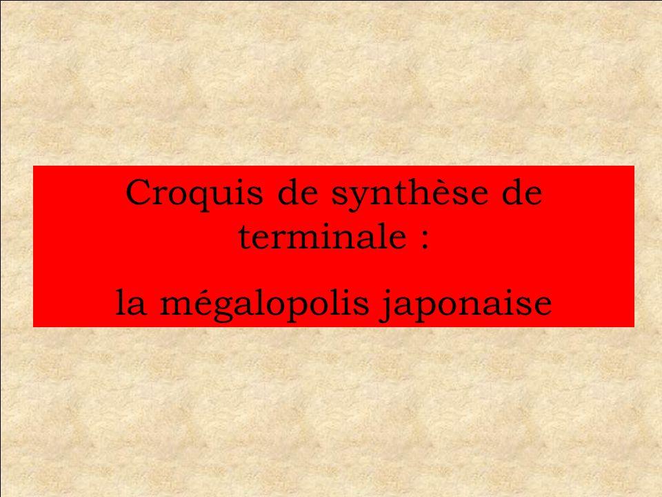 Avant de remplir le croquis, il faut penser à la problématique En quoi la mégalopolis japonaise est-elle laire de puissance majeure de lAsie orientale .