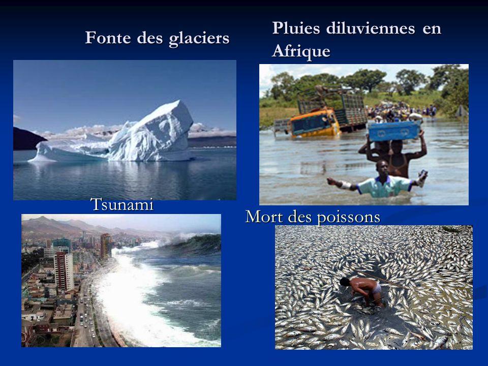 Fonte des glaciers Pluies diluviennes en Afrique Tsunami Mort des poissons