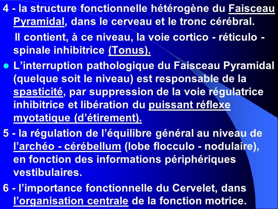 4 - la structure fonctionnelle hétérogène du Faisceau Pyramidal, dans le cerveau et le tronc cérébral. Il contient, à ce niveau, la voie cortico - rét