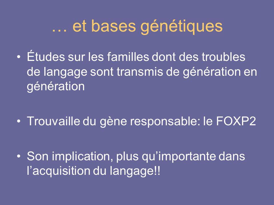 … et bases génétiques Études sur les familles dont des troubles de langage sont transmis de génération en génération Trouvaille du gène responsable: l