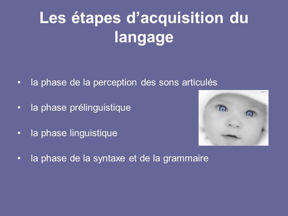 Les étapes dacquisition du langage la phase de la perception des sons articulés la phase prélinguistique la phase linguistique la phase de la syntaxe