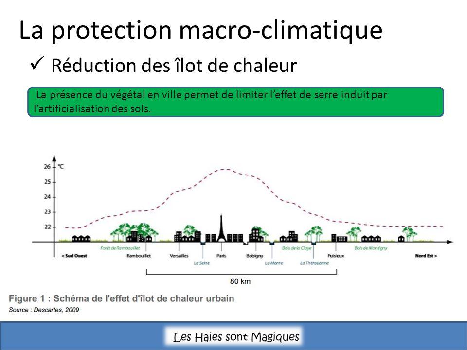 La protection macro-climatique Réduction des îlot de chaleur La présence du végétal en ville permet de limiter leffet de serre induit par lartificialisation des sols.