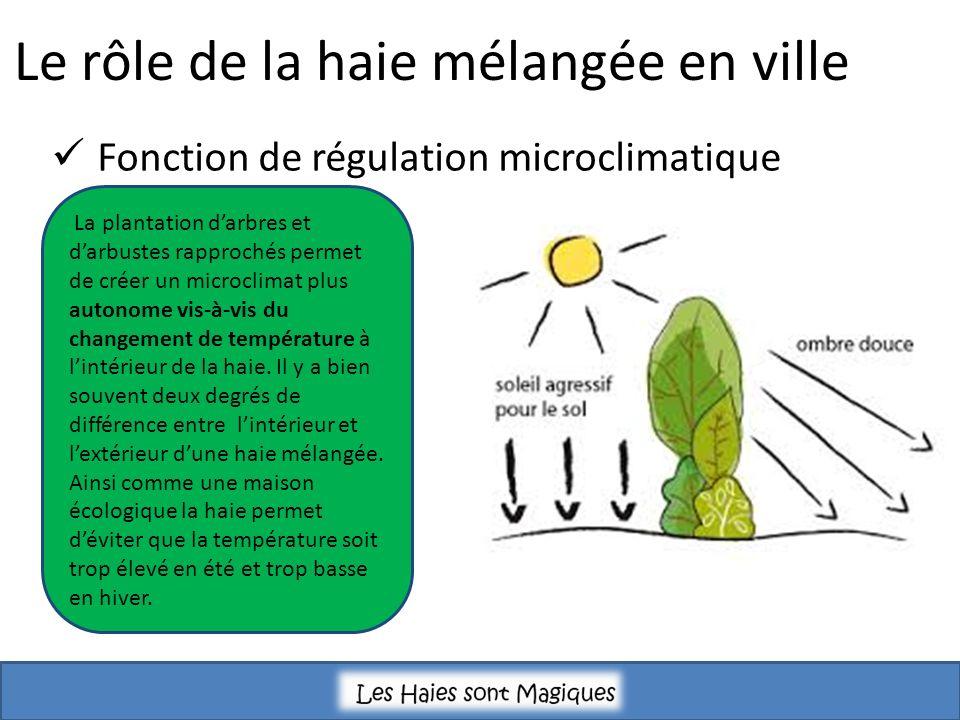 Le rôle de la haie mélangée en ville Fonction de régulation microclimatique La plantation darbres et darbustes rapprochés permet de créer un microclimat plus autonome vis-à-vis du changement de température à lintérieur de la haie.