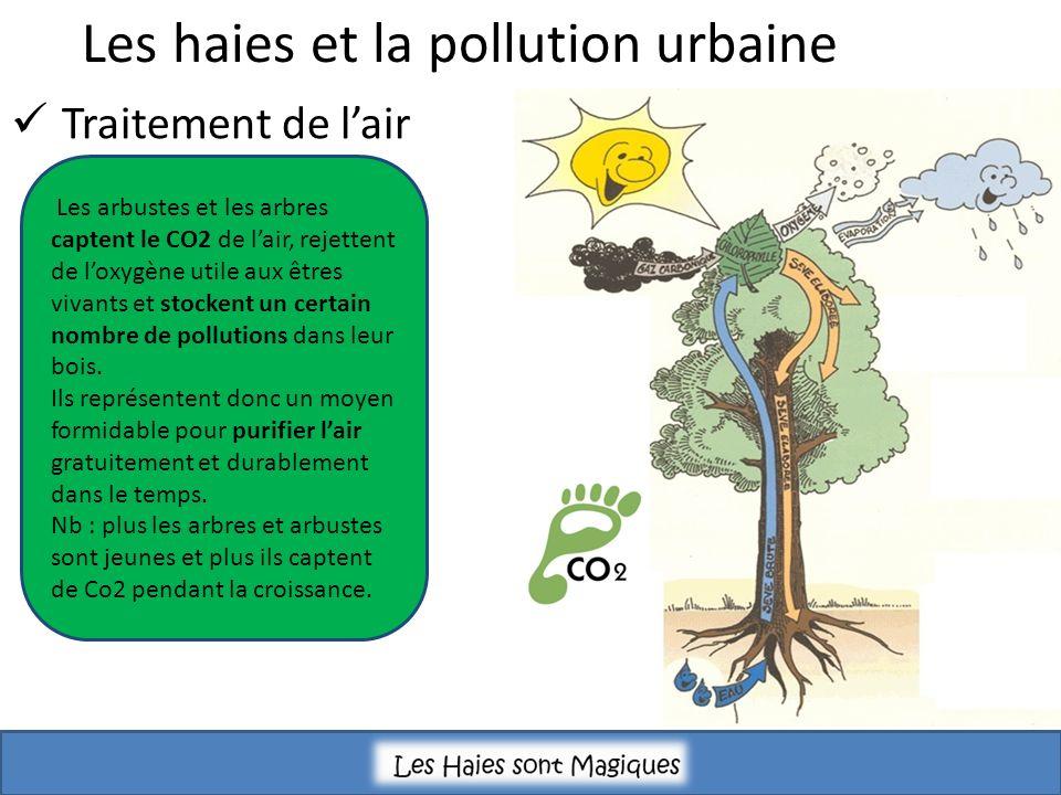 Traitement de lair Les arbustes et les arbres captent le CO2 de lair, rejettent de loxygène utile aux êtres vivants et stockent un certain nombre de pollutions dans leur bois.