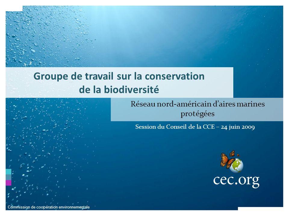 Commission de coopération environnementale Le GTCB a été créé en 2001 en vertu dune résolution du Conseil de la CCE et son mandat consiste à : formuler un plan stratégique de coopération nord-américaine en matière de conservation de la biodiversité donner des avis au Conseil sur la mise en œuvre de ce plan Groupe de travail sur la conservation de la biodiversité La contribution unique du GTCB à la conservation de la biodiversité à léchelle du continent a bénéficié de lapport dintervenants et dexperts des trois pays pour créer : Des connaissances Des outils Des cadres dactivité Des stratégies Des réseaux