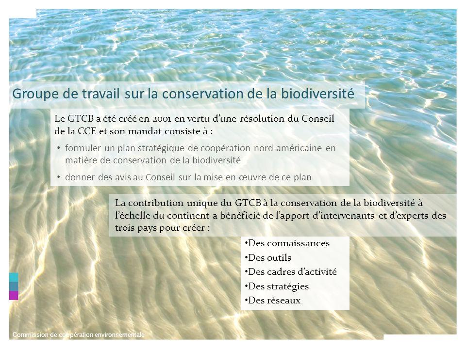 Commission de coopération environnementale Réseau nord-américain daires marines protégées Objectif : Réseau de personnes et de lieux Réalisations Mettre en place des écorégions marines de lAmérique du Nord Désignation et évaluation des aires de conservation prioritaires dans la région Baja-Béring Désignation et évaluation du rapport sur létat de la biodiversité dans la région Baja-Béring Formation du personnel sur les AMP dans la région Baja- Béring en vue de mettre en oeuvre ces principes Établissement dun processus commun par le truchement dinformation et dactivités communes Le RNAAMP a pour but de favoriser la création dun système efficace de réseaux daires marines protégées (AMP) afin de mieux protéger la biodiversité marine en Amérique du Nord Réseau nord-américain daires marines protégées