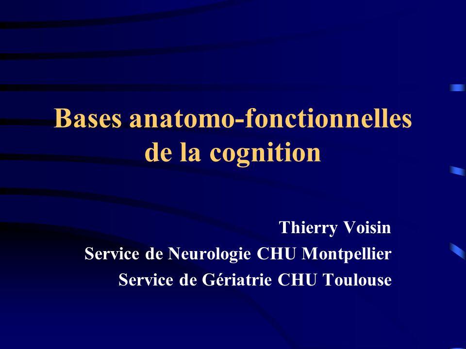 Bases anatomo-fonctionnelles de la cognition Thierry Voisin Service de Neurologie CHU Montpellier Service de Gériatrie CHU Toulouse