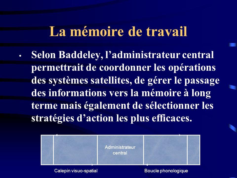 La mémoire de travail Selon Baddeley, ladministrateur central permettrait de coordonner les opérations des systèmes satellites, de gérer le passage de