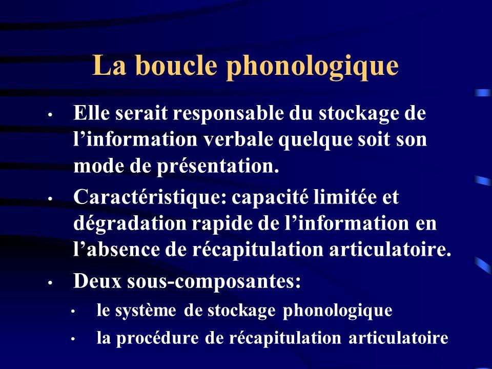 La boucle phonologique Elle serait responsable du stockage de linformation verbale quelque soit son mode de présentation. Caractéristique: capacité li