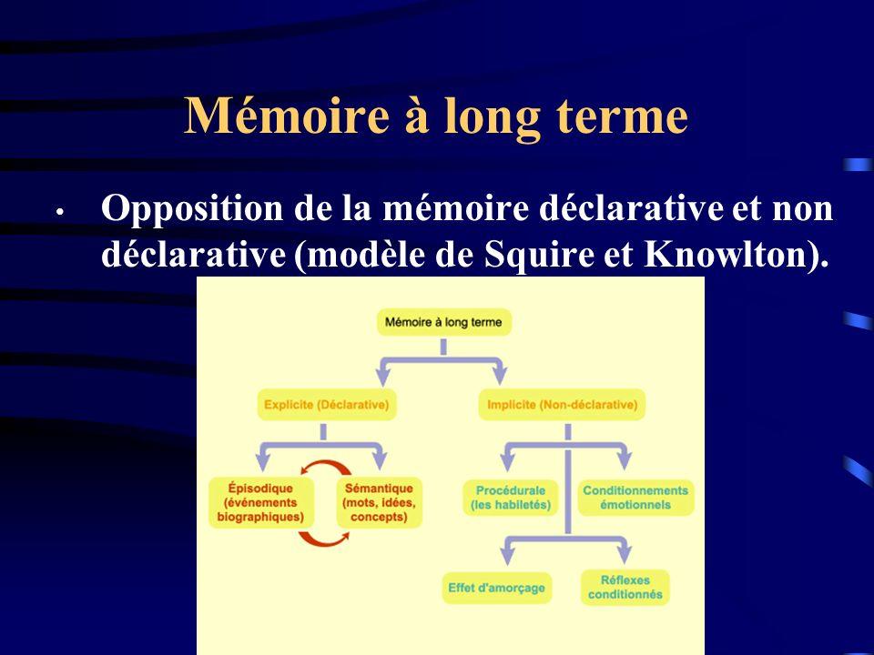 Mémoire à long terme Opposition de la mémoire déclarative et non déclarative (modèle de Squire et Knowlton).