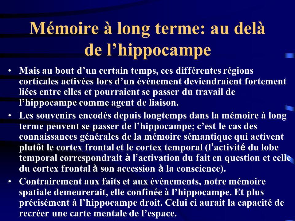 Mémoire à long terme: au delà de lhippocampe Mais au bout dun certain temps, ces différentes régions corticales activées lors dun événement deviendrai