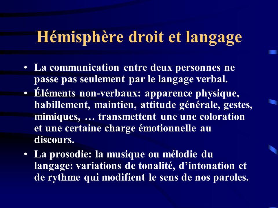 Hémisphère droit et langage La communication entre deux personnes ne passe pas seulement par le langage verbal. Éléments non-verbaux: apparence physiq