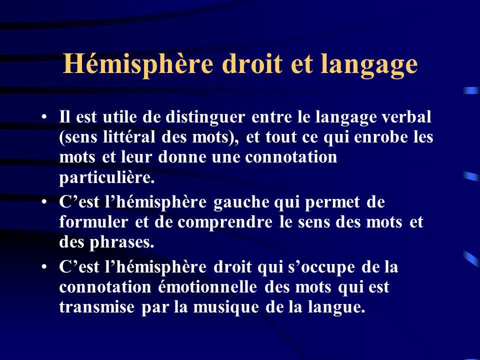 Hémisphère droit et langage Il est utile de distinguer entre le langage verbal (sens littéral des mots), et tout ce qui enrobe les mots et leur donne