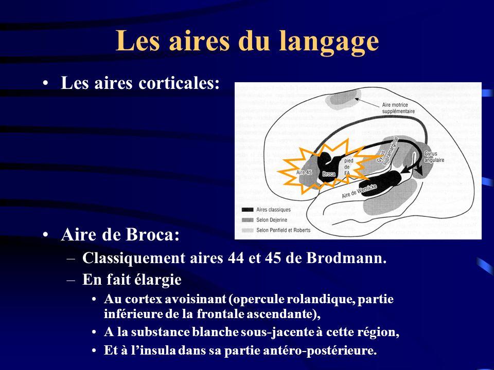 Les aires du langage Les aires corticales: Aire de Broca: –Classiquement aires 44 et 45 de Brodmann. –En fait élargie Au cortex avoisinant (opercule r