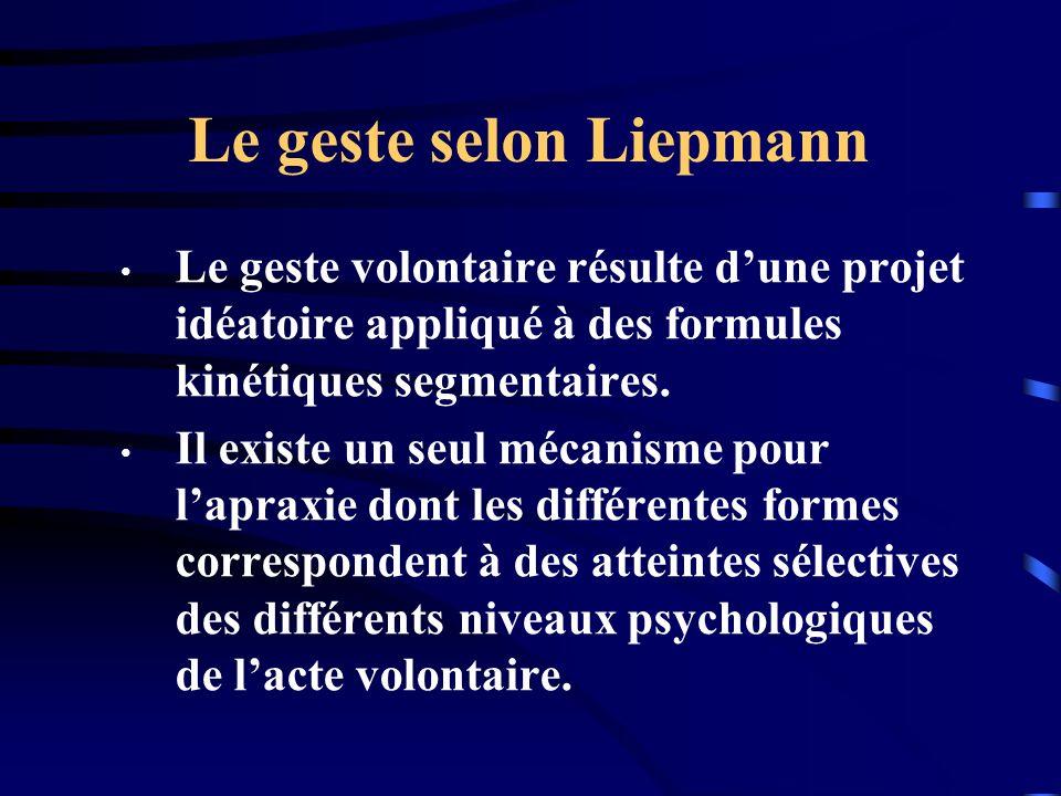 Le geste selon Liepmann Le geste volontaire résulte dune projet idéatoire appliqué à des formules kinétiques segmentaires. Il existe un seul mécanisme