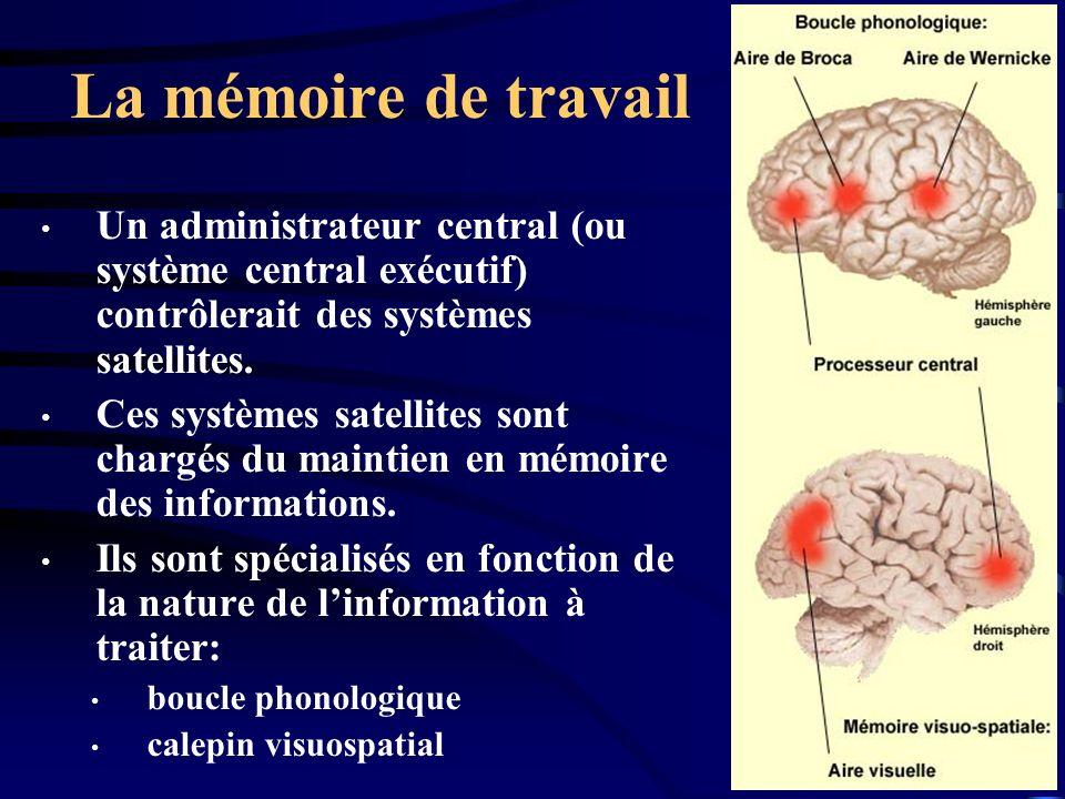 La mémoire de travail Un administrateur central (ou système central exécutif) contrôlerait des systèmes satellites. Ces systèmes satellites sont charg