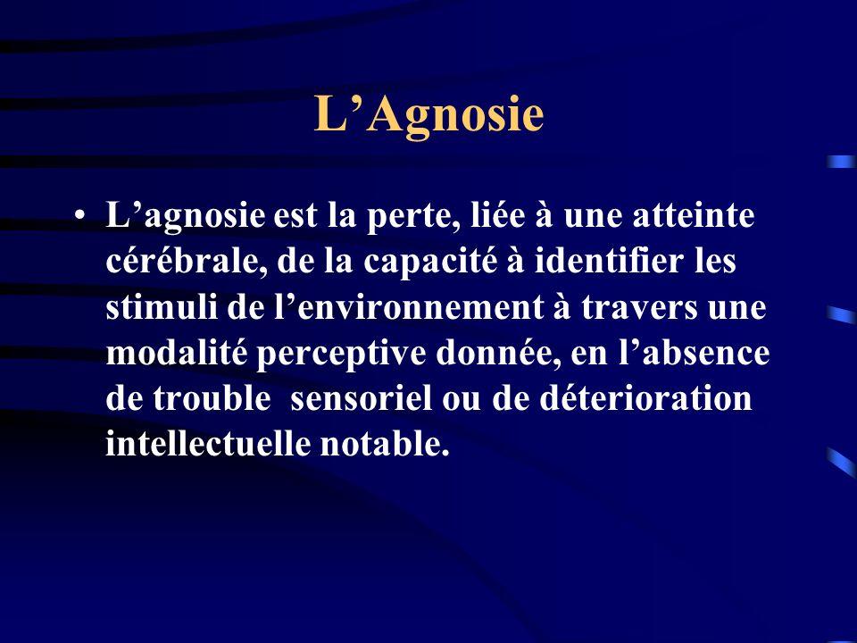 LAgnosie Lagnosie est la perte, liée à une atteinte cérébrale, de la capacité à identifier les stimuli de lenvironnement à travers une modalité percep