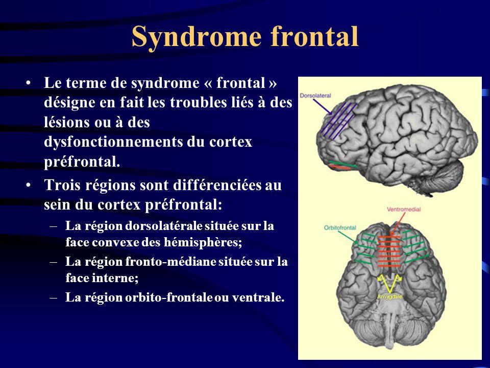Syndrome frontal Le terme de syndrome « frontal » désigne en fait les troubles liés à des lésions ou à des dysfonctionnements du cortex préfrontal. Tr