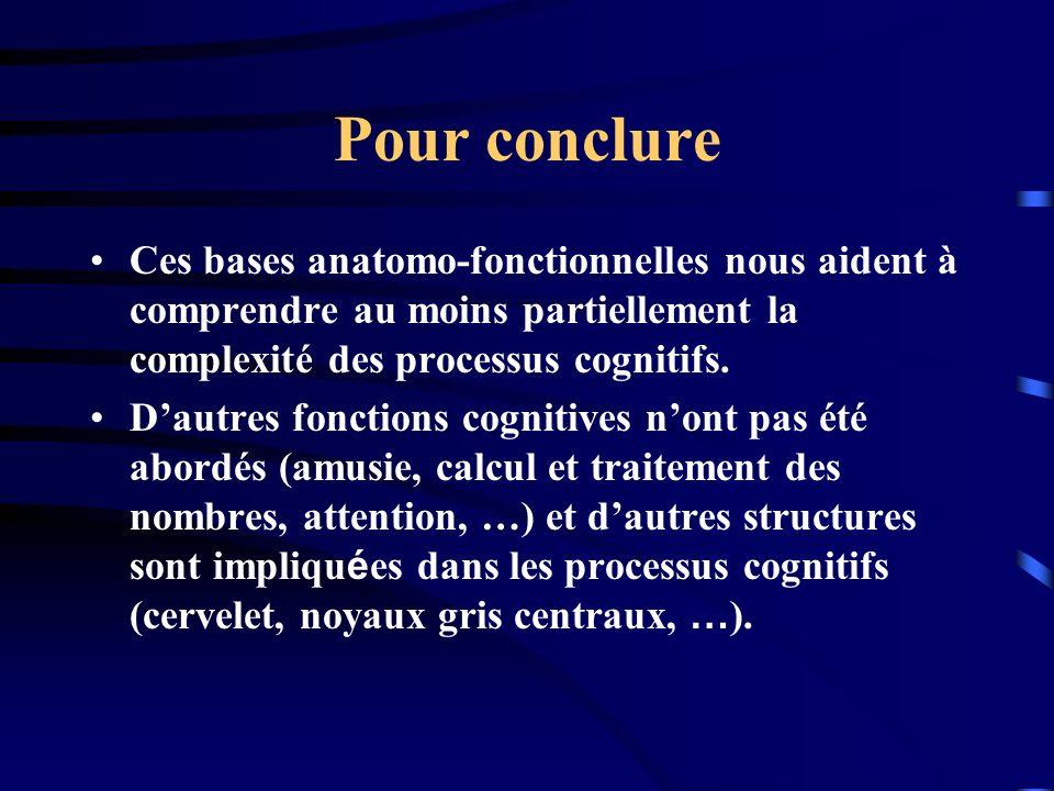 Pour conclure Ces bases anatomo-fonctionnelles nous aident à comprendre au moins partiellement la complexité des processus cognitifs. Dautres fonction