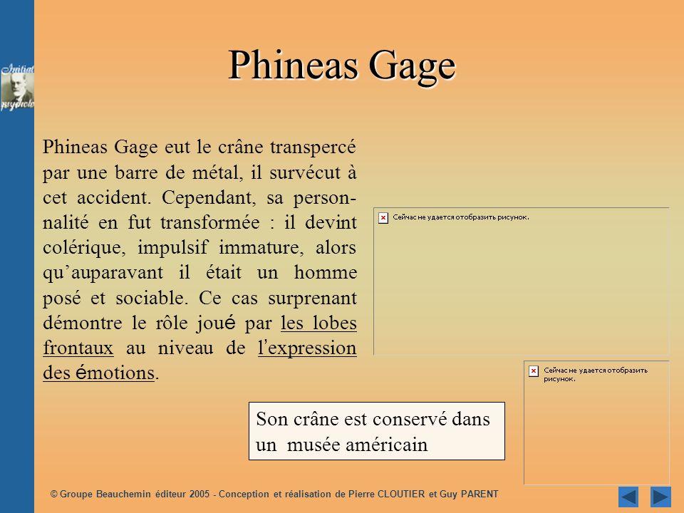 © Groupe Beauchemin éditeur 2005 - Conception et réalisation de Pierre CLOUTIER et Guy PARENT Son crâne est conservé dans un musée américain Phineas G