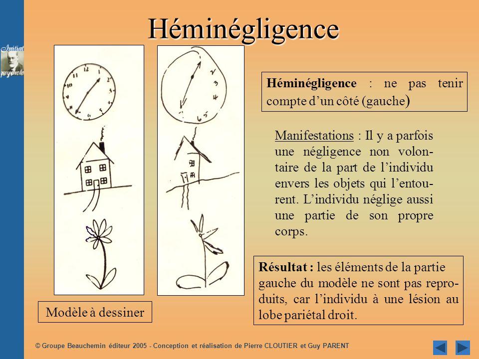 © Groupe Beauchemin éditeur 2005 - Conception et réalisation de Pierre CLOUTIER et Guy PARENT Héminégligence : ne pas tenir compte dun côté (gauche )