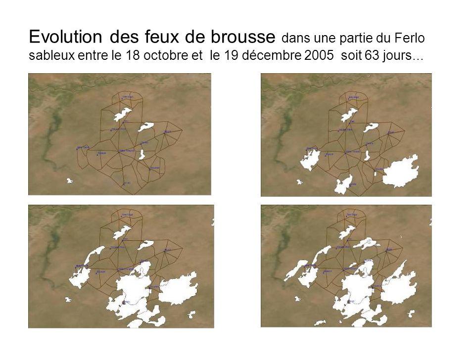 Evolution des feux de brousse dans une partie du Ferlo sableux entre le 18 octobre et le 19 décembre 2005 soit 63 jours...