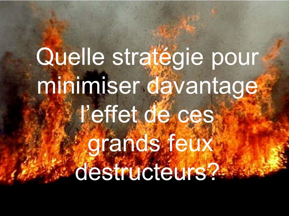 Quelle stratégie pour minimiser davantage leffet de ces grands feux destructeurs?