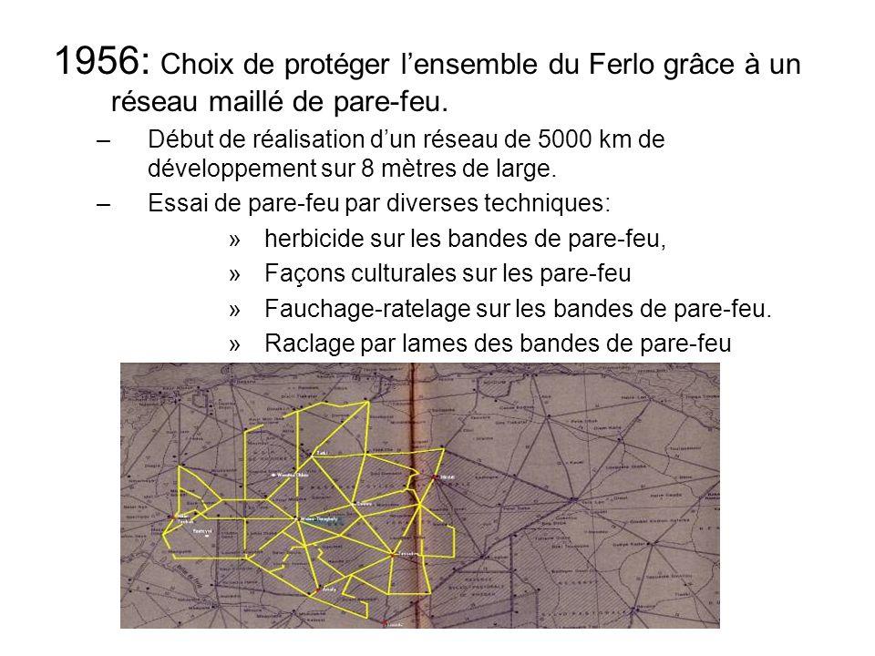 1956: Choix de protéger lensemble du Ferlo grâce à un réseau maillé de pare-feu.