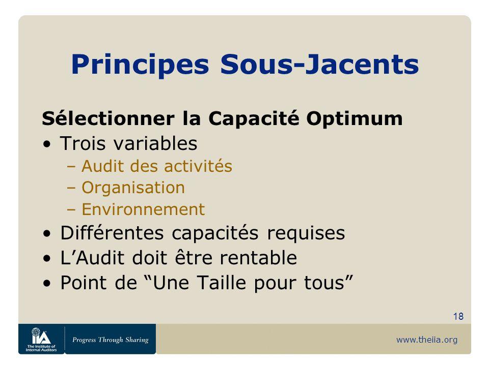 www.theiia.org 18 Principes Sous-Jacents Sélectionner la Capacité Optimum Trois variables –Audit des activités –Organisation –Environnement Différente