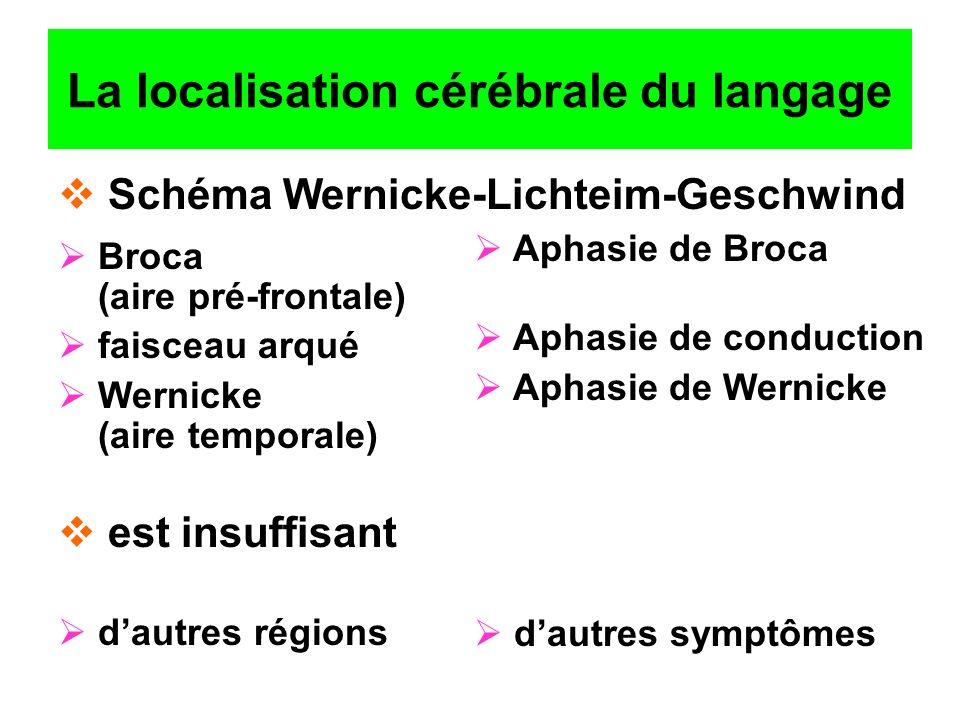 La localisation cérébrale du langage Broca (aire pré-frontale) faisceau arqué Wernicke (aire temporale) dautres régions Aphasie de Broca Aphasie de co