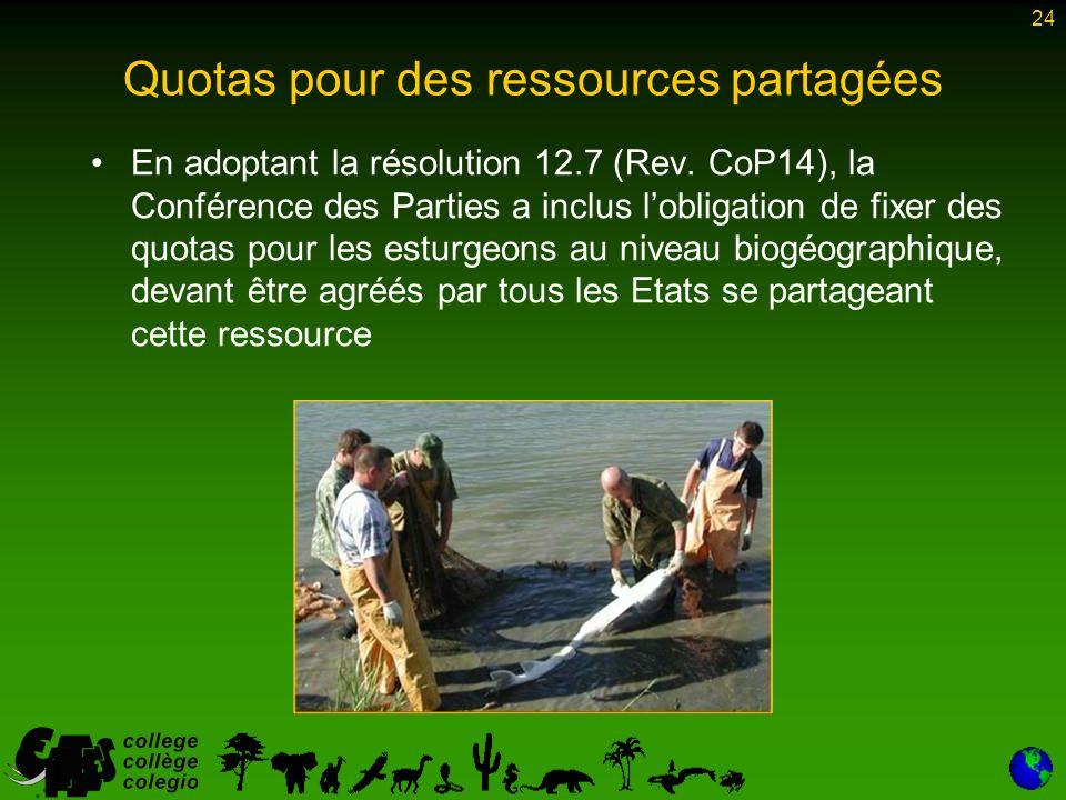 24 Quotas pour des ressources partagées En adoptant la résolution 12.7 (Rev.