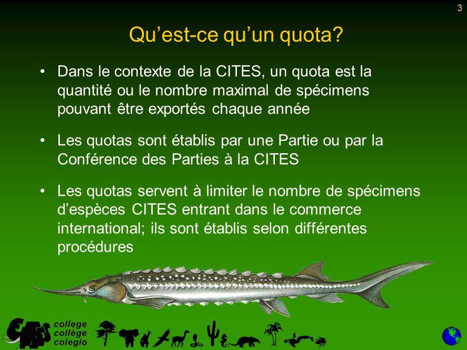 4 Les quotas d exportation CITES devraient résulter (et cest dailleurs souvent le cas) –de programmes nationaux effectifs de gestion de la conservation visant à prévenir les prélèvements non durables dans les populations sauvages –dun avis émis par les autorités scientifiques CITES, conformément à lArticle III, paragraphe 2 a), de la Convention (pour les espèces de l Annexe I) ou à lArticle IV, paragraphe 2 a) (pour les espèces de l Annexe II), indiquant que le nombre de spécimens pouvant être exportés dans le cadre du quota ne nuira pas à la survie de ces espèces Les quotas et les autorités scientifiques