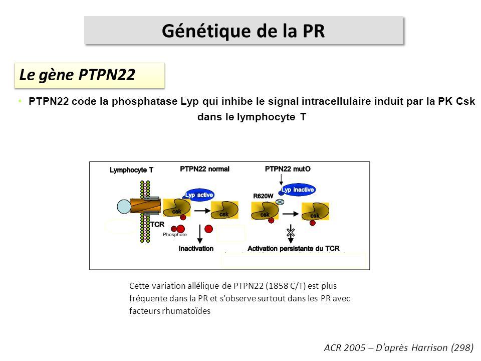 Le gène PTPN22 ACR 2005 – Daprès Harrison (298) Génétique de la PR PTPN22 code la phosphatase Lyp qui inhibe le signal intracellulaire induit par la P
