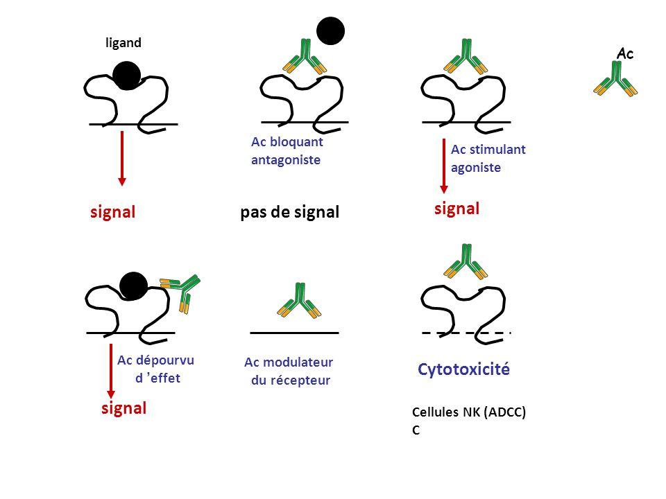 signal Ac dépourvu d effet signal Ac bloquant antagoniste pas de signal Ac stimulant agoniste Ac modulateur du récepteur Cytotoxicité Cellules NK (ADC
