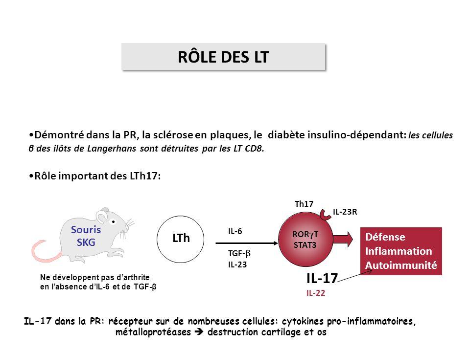 RÔLE DES LT Démontré dans la PR, la sclérose en plaques, le diabète insulino-dépendant: les cellules β des ilôts de Langerhans sont détruites par les