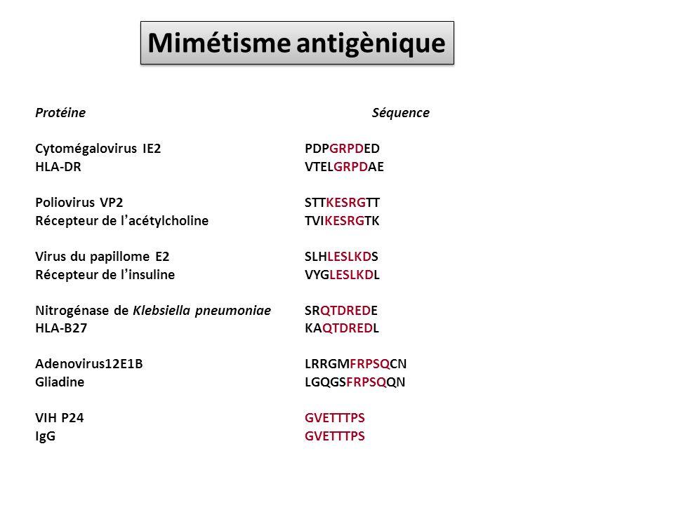 ProtéineSéquence Cytomégalovirus IE2PDPGRPDED HLA-DRVTELGRPDAE Poliovirus VP2STTKESRGTT Récepteur de lacétylcholineTVIKESRGTK Virus du papillome E2SLH
