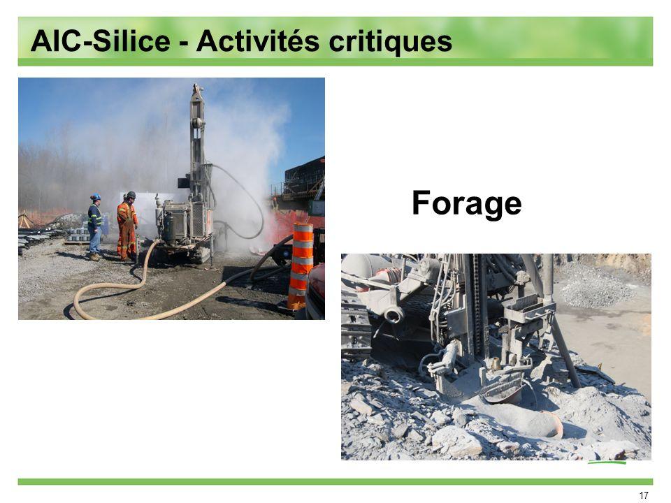 17 Forage AIC-Silice - Activités critiques