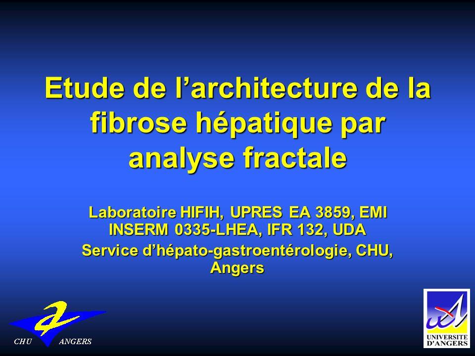 Etude de larchitecture de la fibrose hépatique par analyse fractale Laboratoire HIFIH, UPRES EA 3859, EMI INSERM 0335-LHEA, IFR 132, UDA Service dhépa
