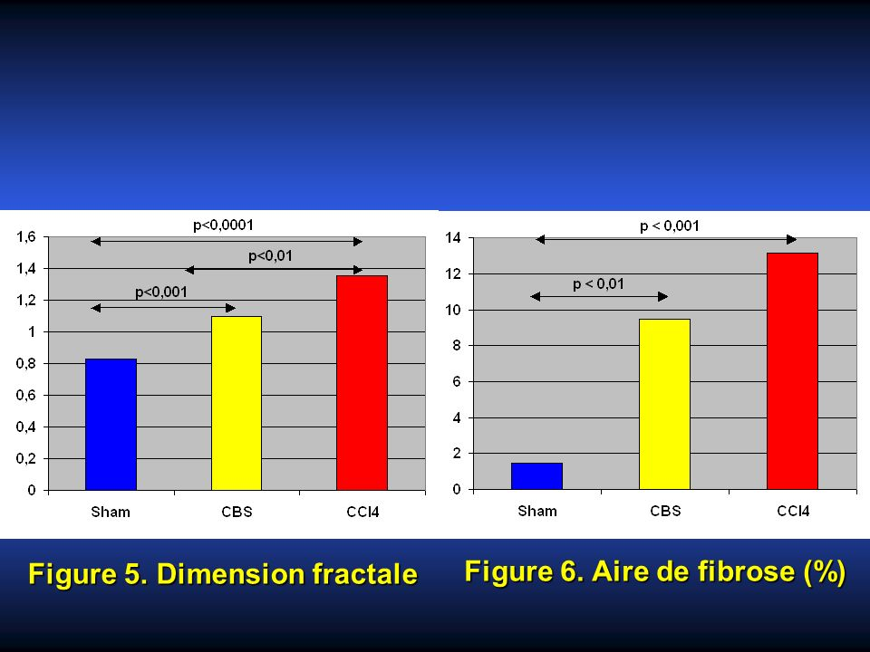 Figure 5. Dimension fractale Figure 6. Aire de fibrose (%)